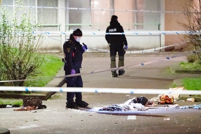US criminologist lauds Malmö for anti-gang success